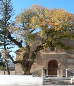 Melegís church