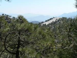 View from near Cruz Chiquita, Lecrín Valley