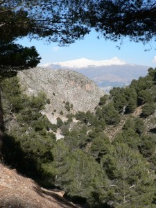 View of Sierra Nevada from GR-7 near Albuñuelas